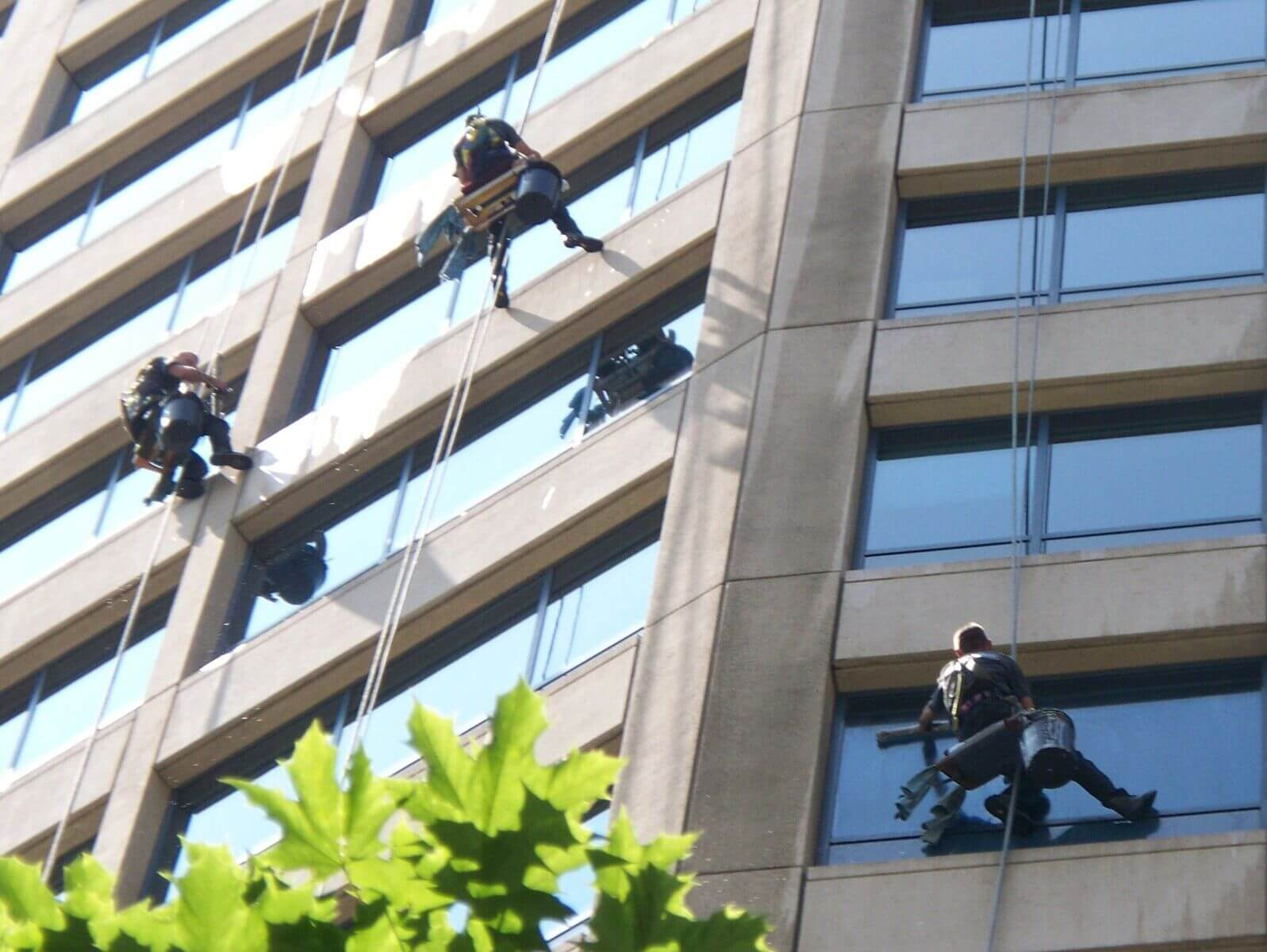 window cleaning services cape town
